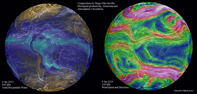 Biological productivity amazonia atmmospheric circulation DiegoFdezSevilla