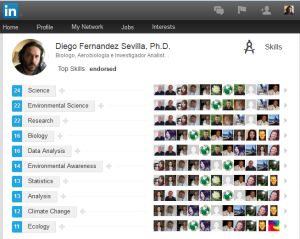 Skills endorsed LinkedIn Diego Fdez-Sevilla
